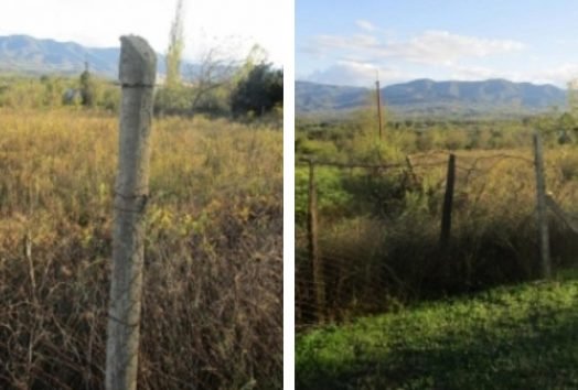 Land for sale in Zestafoni 1
